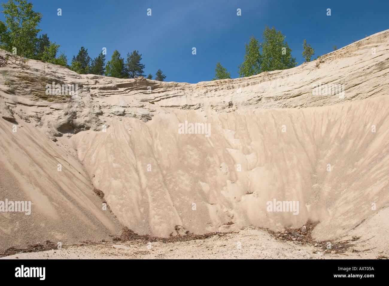 Sandpit wall in a sandy ridge , glacial esker - Stock Image