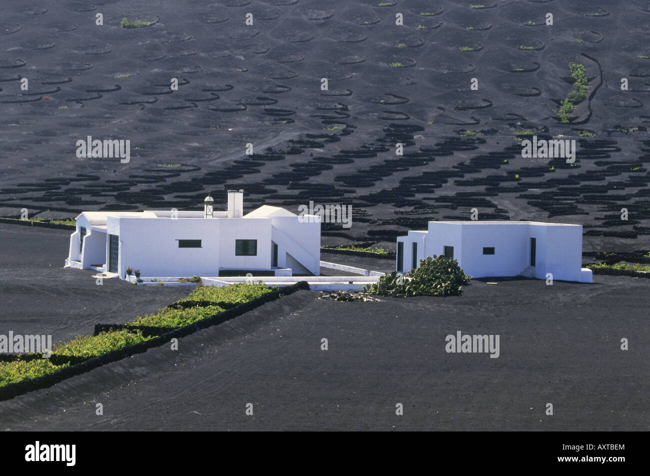 geography / travel, Spain, Canary Islands, Lanzarote, House, wine - growing district, La Geria, vulcano, Canaries, - Stock Image
