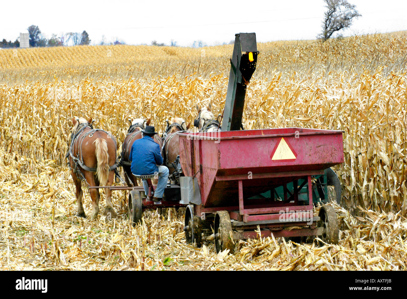 Amish lifestyle in and around Sugarcreek and Millersburg Ohio OH Stock Photo