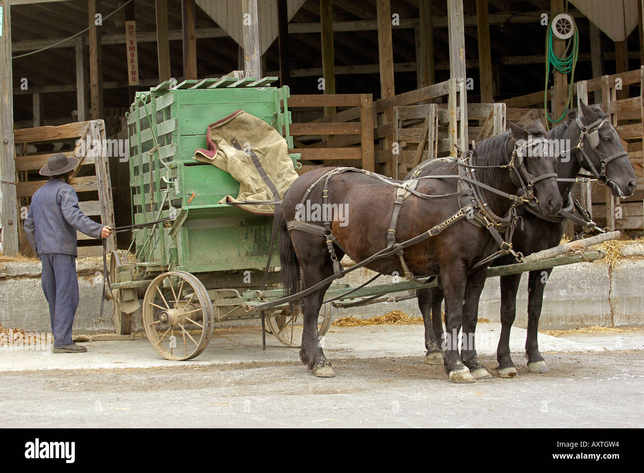 Amish lifestyle in and around Millersburg and Sugarcreek Ohio OH Stock Photo