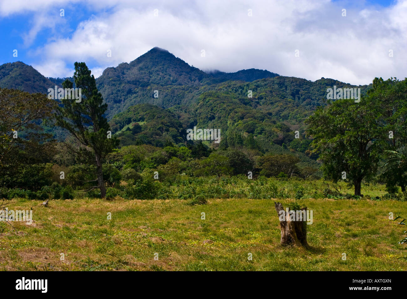 Peaks in Parque Nacional Volcan Baru National Park near Boquete Northern Panama - Stock Image