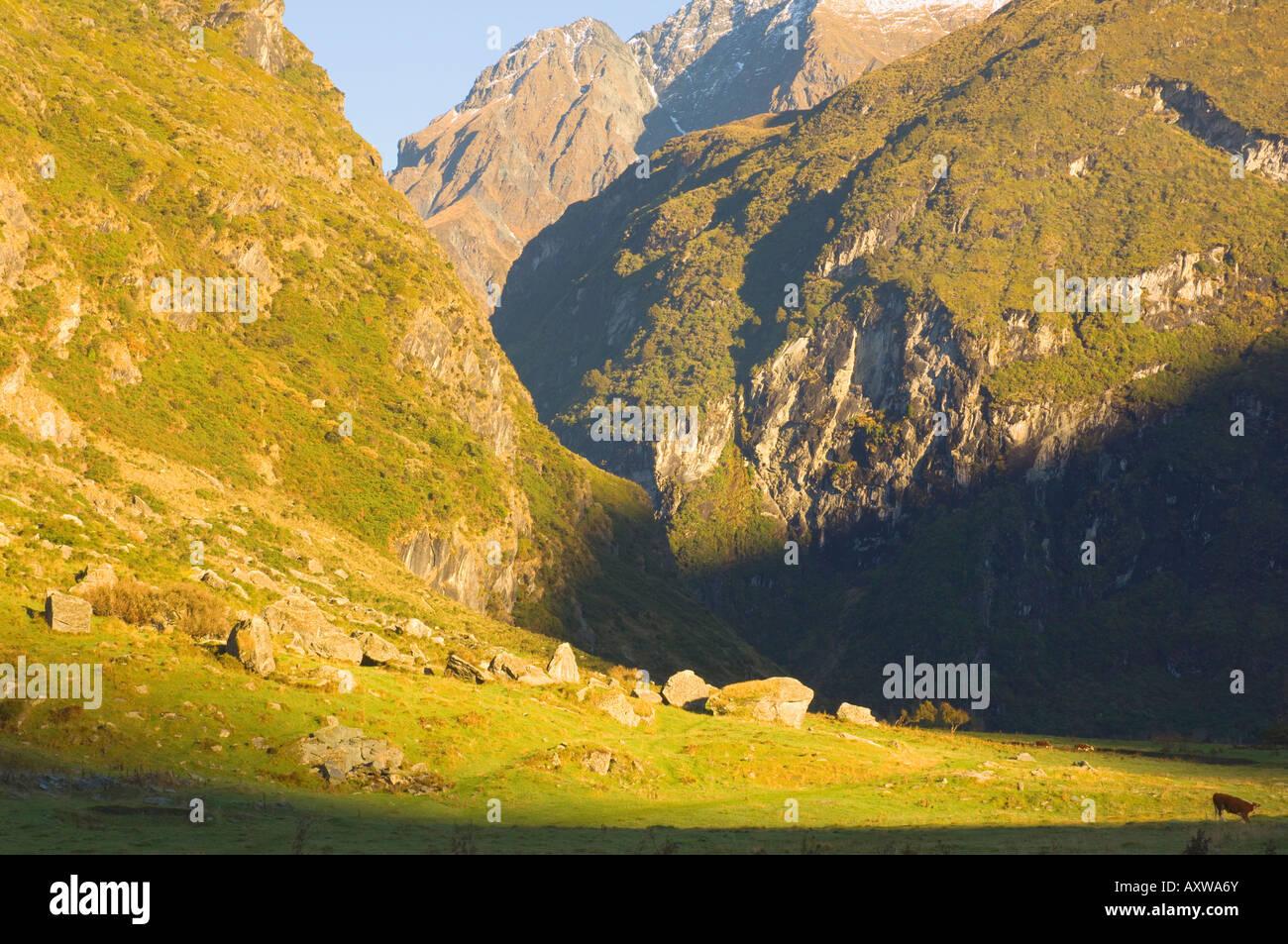 Matukituki Valley, Central Otago, South Island, New Zealand, Pacific - Stock Image