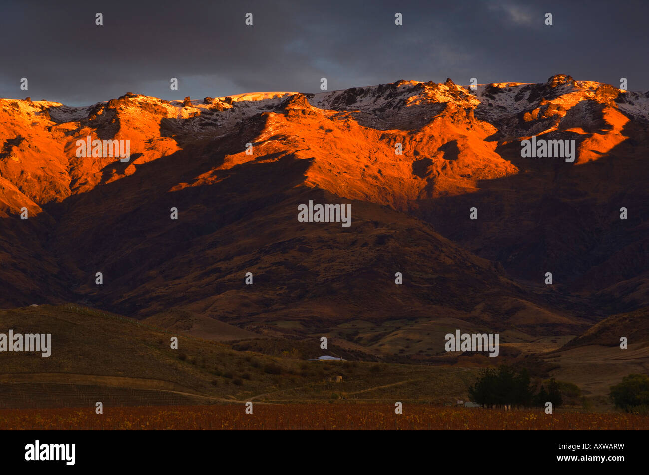 Pisa Range, Mount Pisa, Central Otago, South Island, New Zealand, Pacific - Stock Image