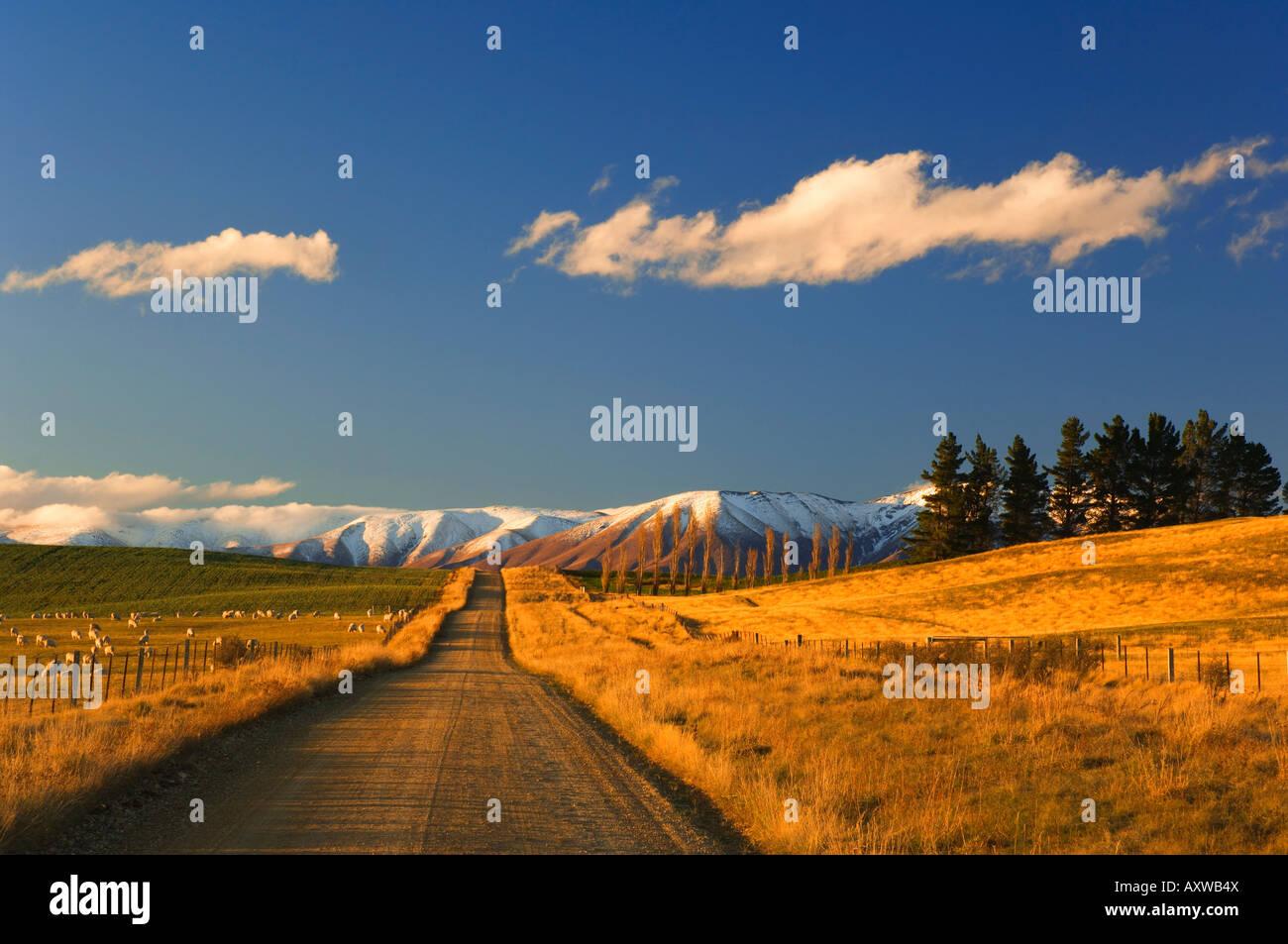 Gravel road and Hawkdun Range, Ranfurly, Central Otago, South Island, New Zealand, Pacific - Stock Image