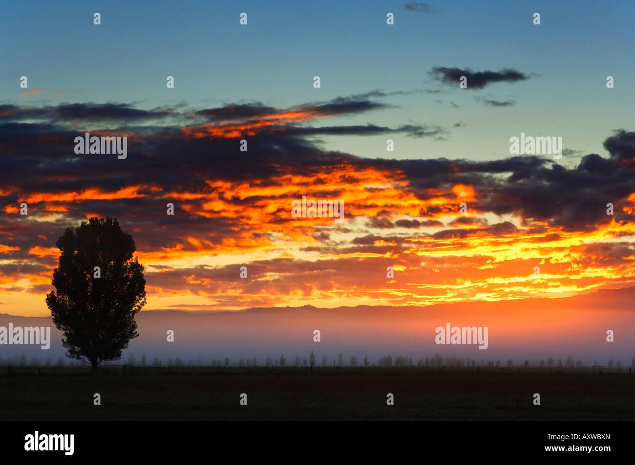Sunrise, Alexandra, Central Otago, South Island, New Zealand, Pacific Stock Photo