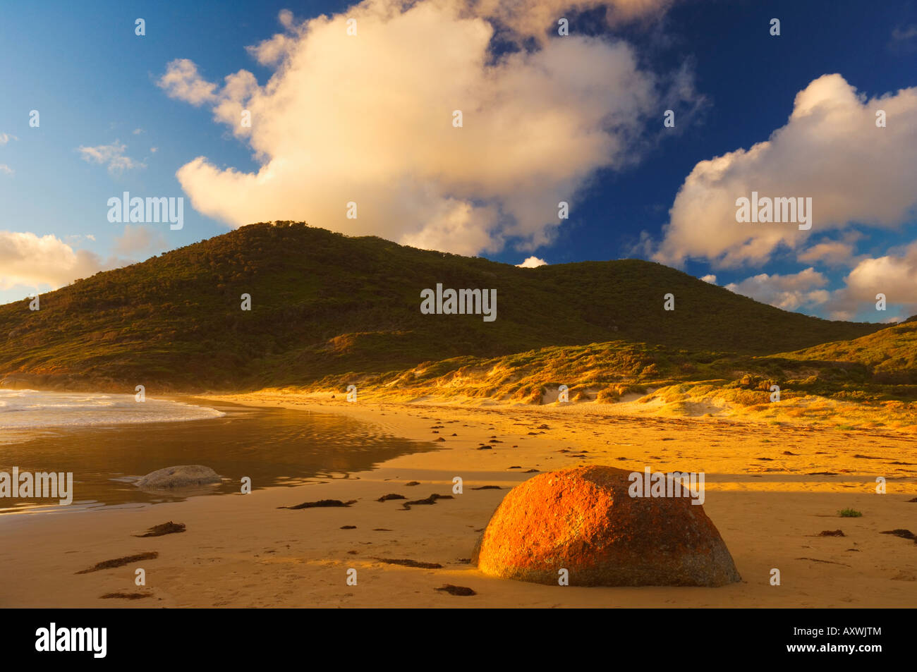 Whisky Bay, Wilsons Promontory National Park, Victoria, Australia, Pacific - Stock Image