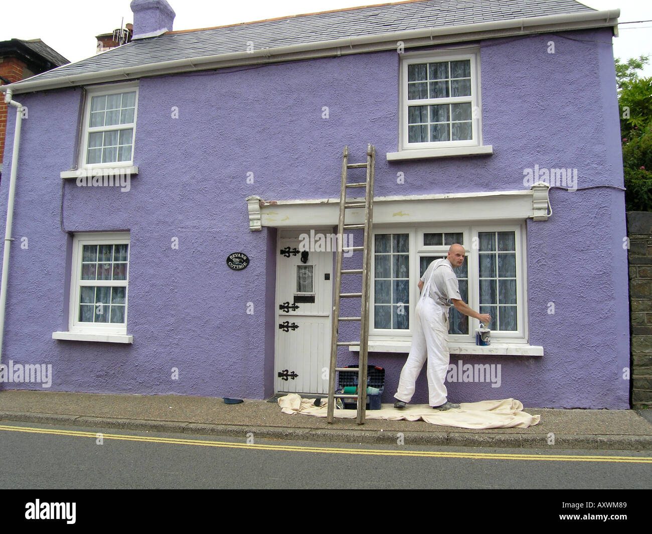 painter redecorating exteroir of purple house in Combe Martin Devon ...