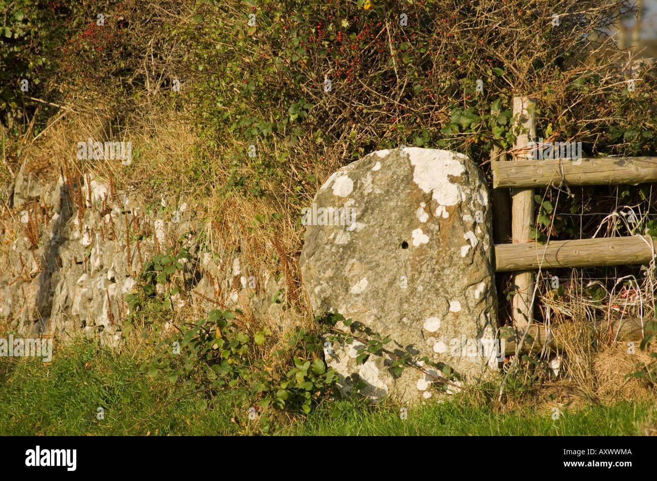 old stone gatepost in hedge near Llanrhystud ceredigion wales UK - Stock Image