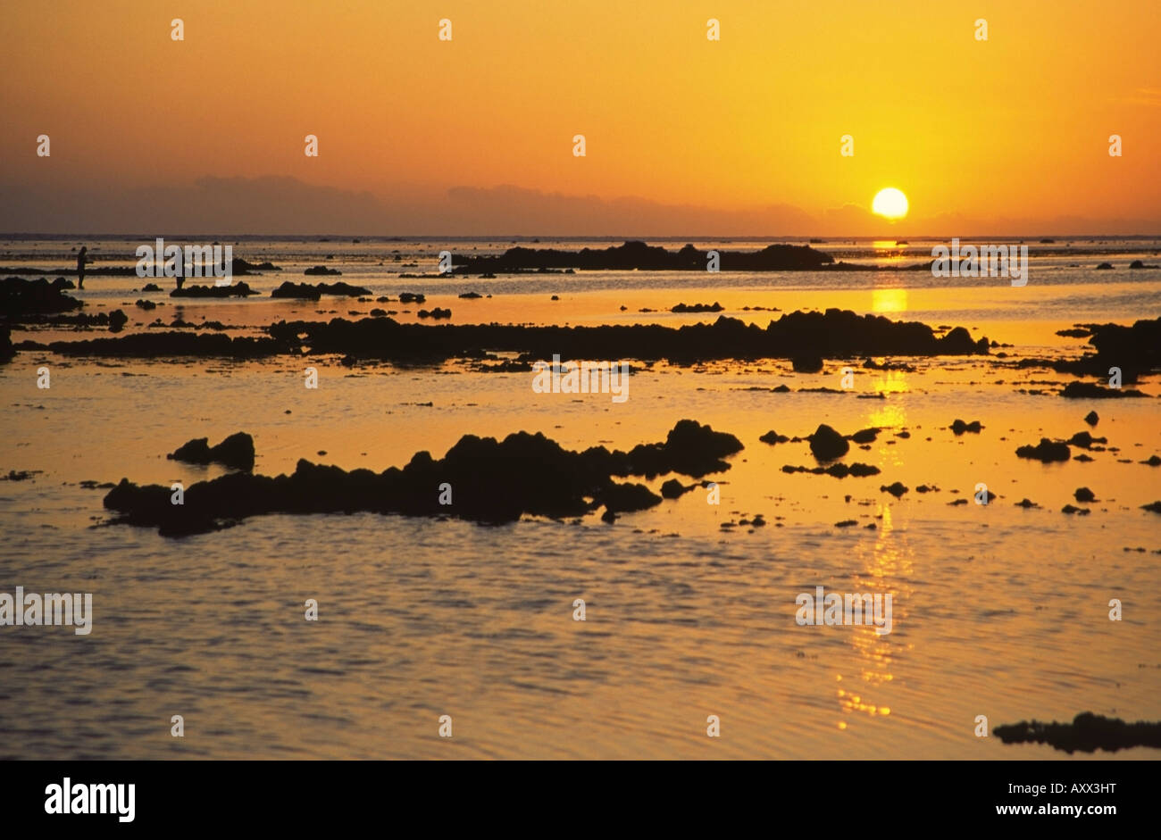 South Pacific Fiji Islands Viti Levu Coral Coast - Stock Image