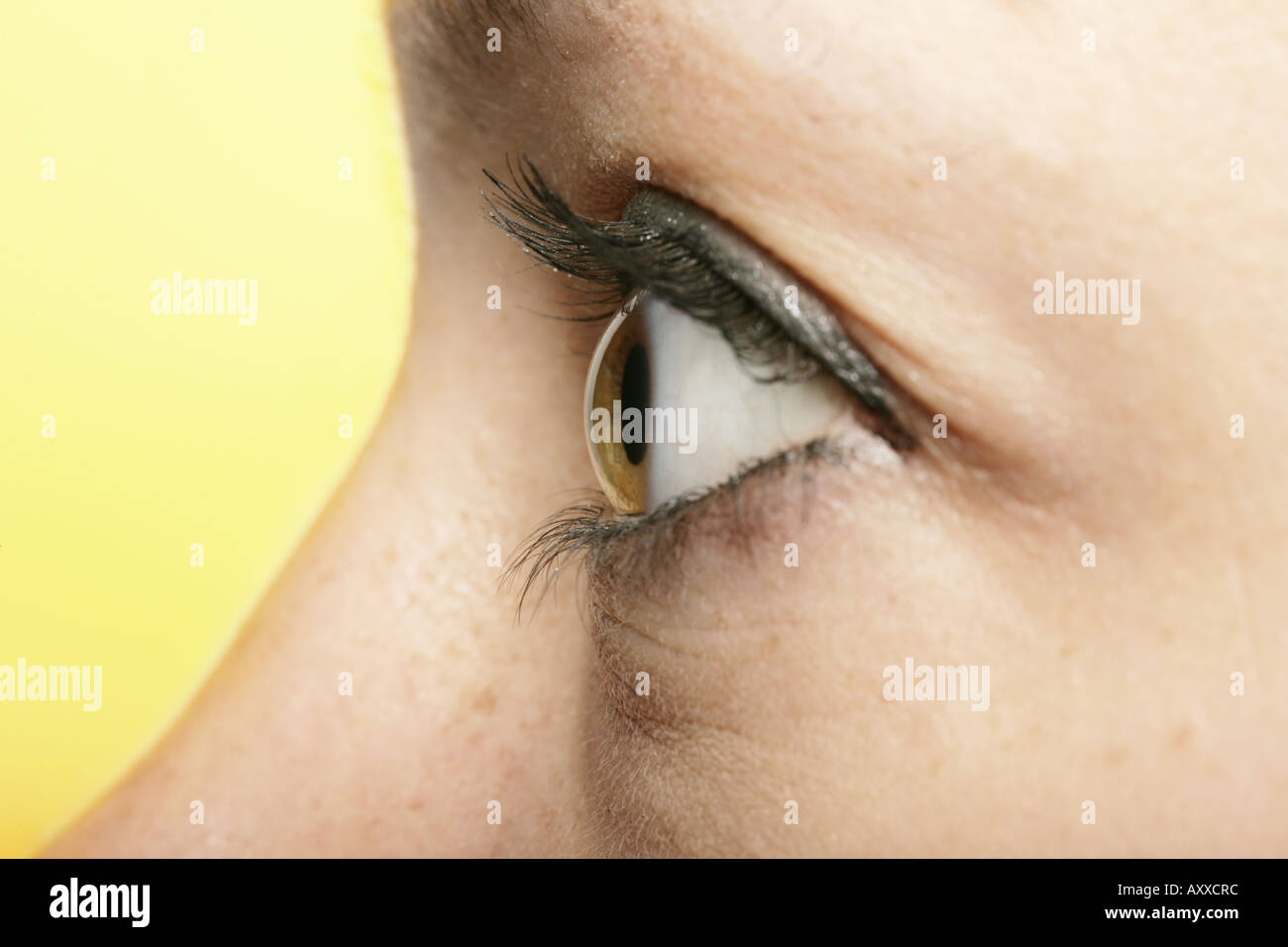 Anatomy Face Pupil Sclera Stock Photos & Anatomy Face Pupil Sclera ...