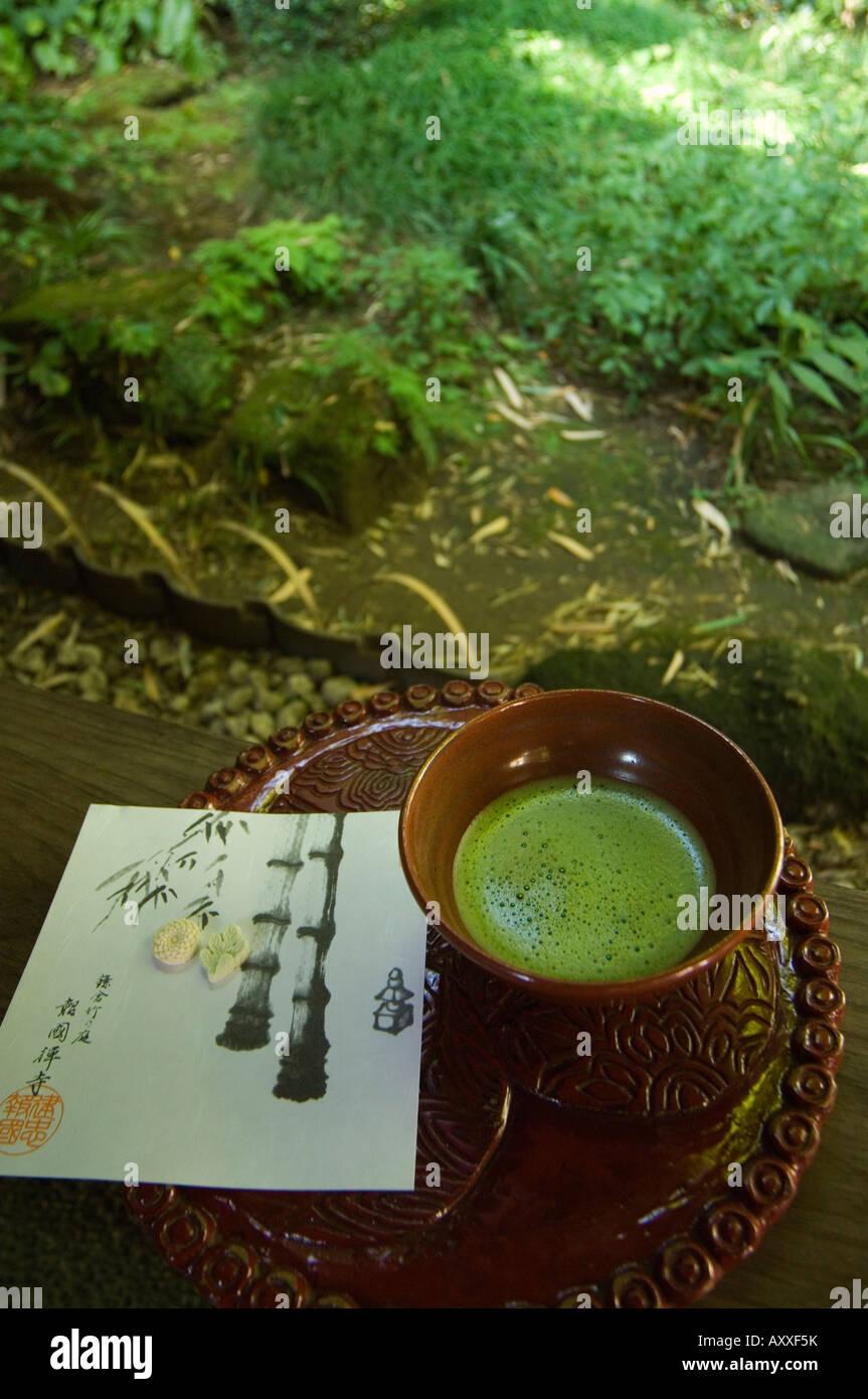 Tea ceremony in bamboo forest,  Kamakura city, Kanagawa prefecture, Japan, Asia - Stock Image