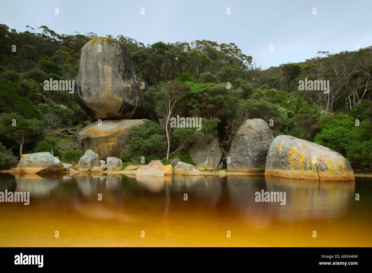 River, Tidal River, Wilsons Promontory, Victoria, Australia - Stock Image