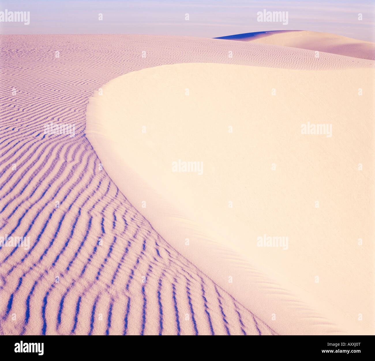 Dunes, White Sands National Park, New Mexico, United States of America (U.S.A.), North America - Stock Image