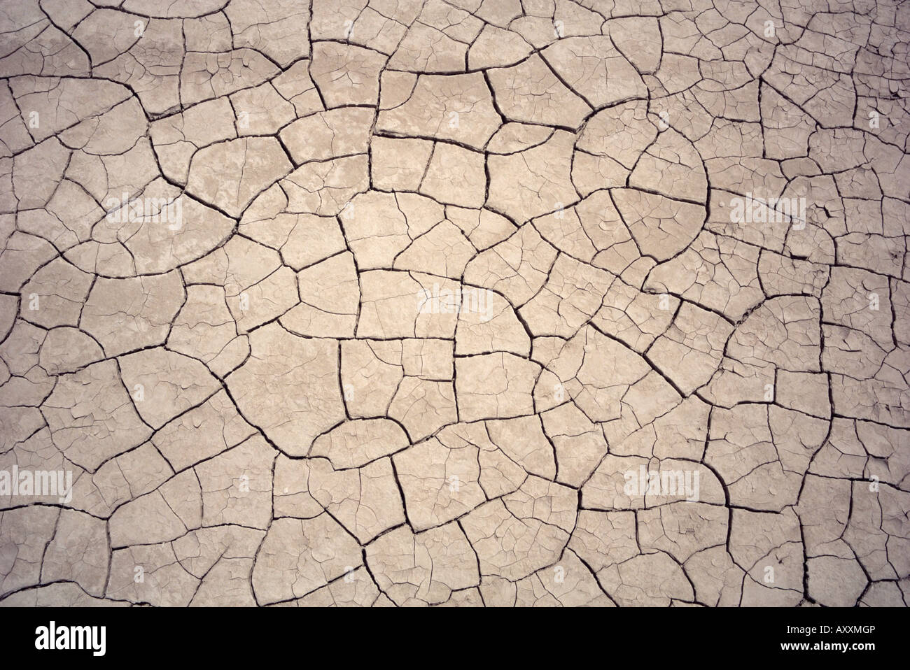 Patterns in mud cracks in drought area Stock Photo