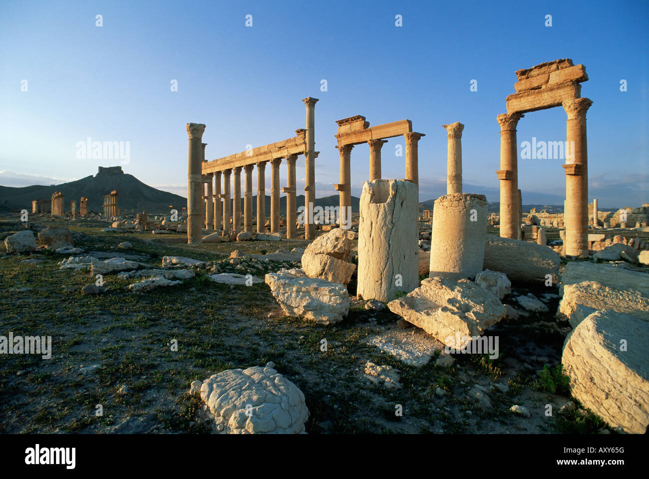 The archaeological site, Palmyra, UNESCO World Heritage Site, Syria, Middle East - Stock Image
