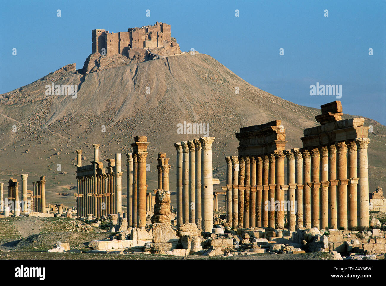 Grand colonnade and the Arab castle, Palmyra, UNESCO World Heritage Site, Syria, Middle East - Stock Image