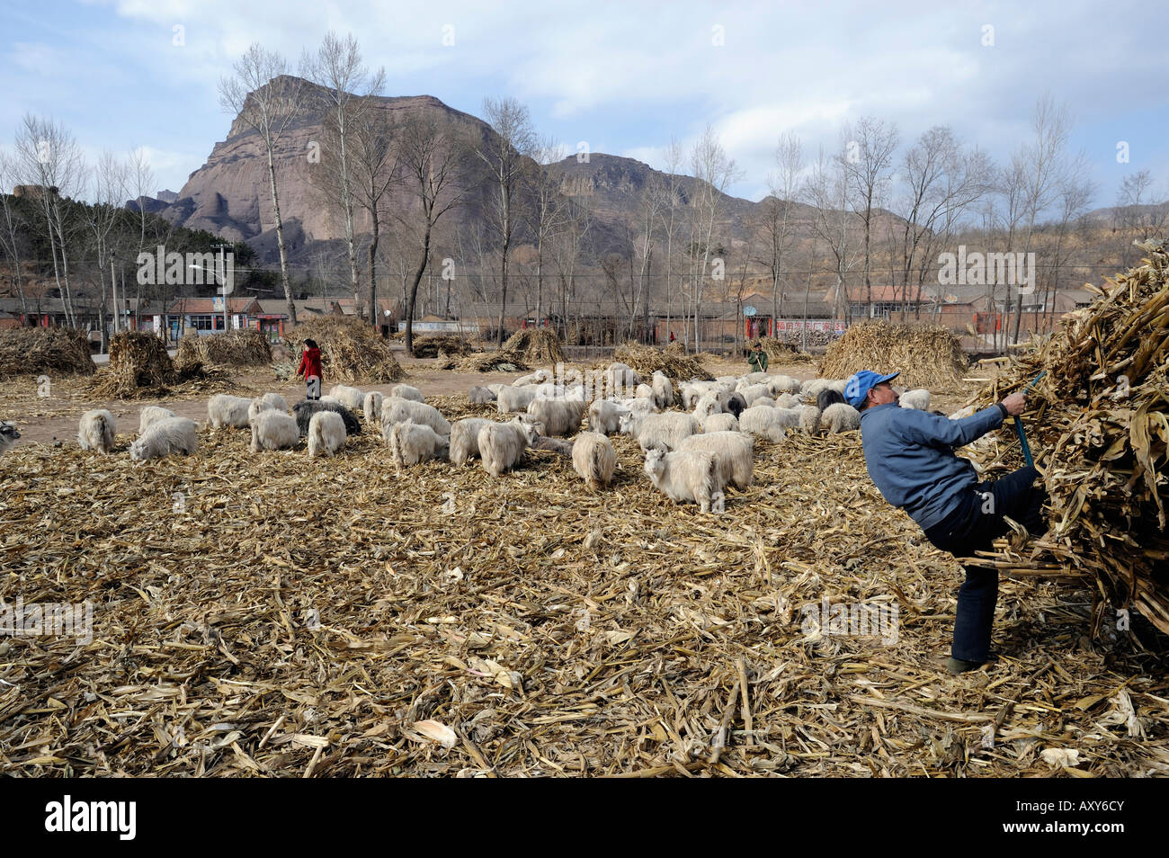 A village in Chicheng county, Hebei province, China. 27-Mar-2008 - Stock Image