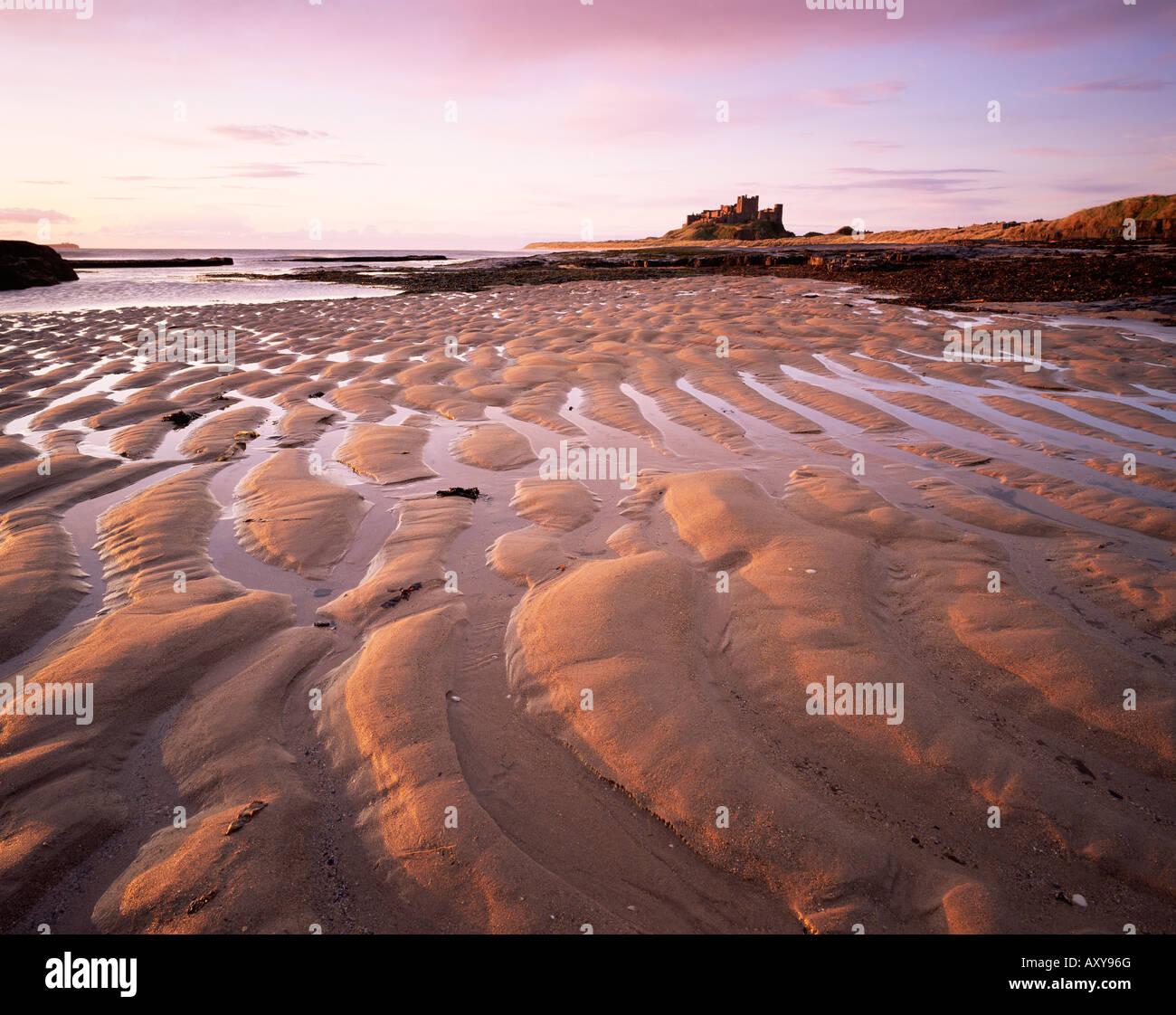 Bamburgh castle and Bamburgh beach at sunrise, Bamburgh, Northumberland, England, United Kingdom, Europe Stock Photo