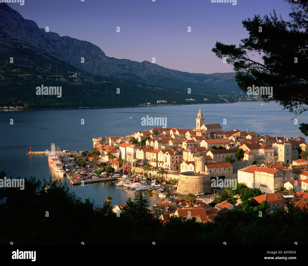 Elevated view of Korcula Town, Old Town of Korcula, Korcula Island, Dalmatia, Dalmatian coast, Croatia, Europe - Stock Image