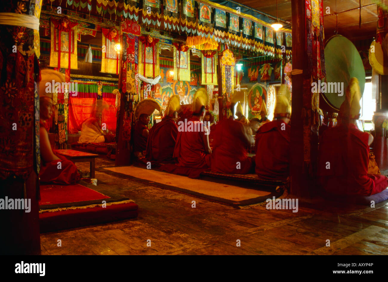 Monks praying in a buddhist temple in Likir Tibet - Stock Image
