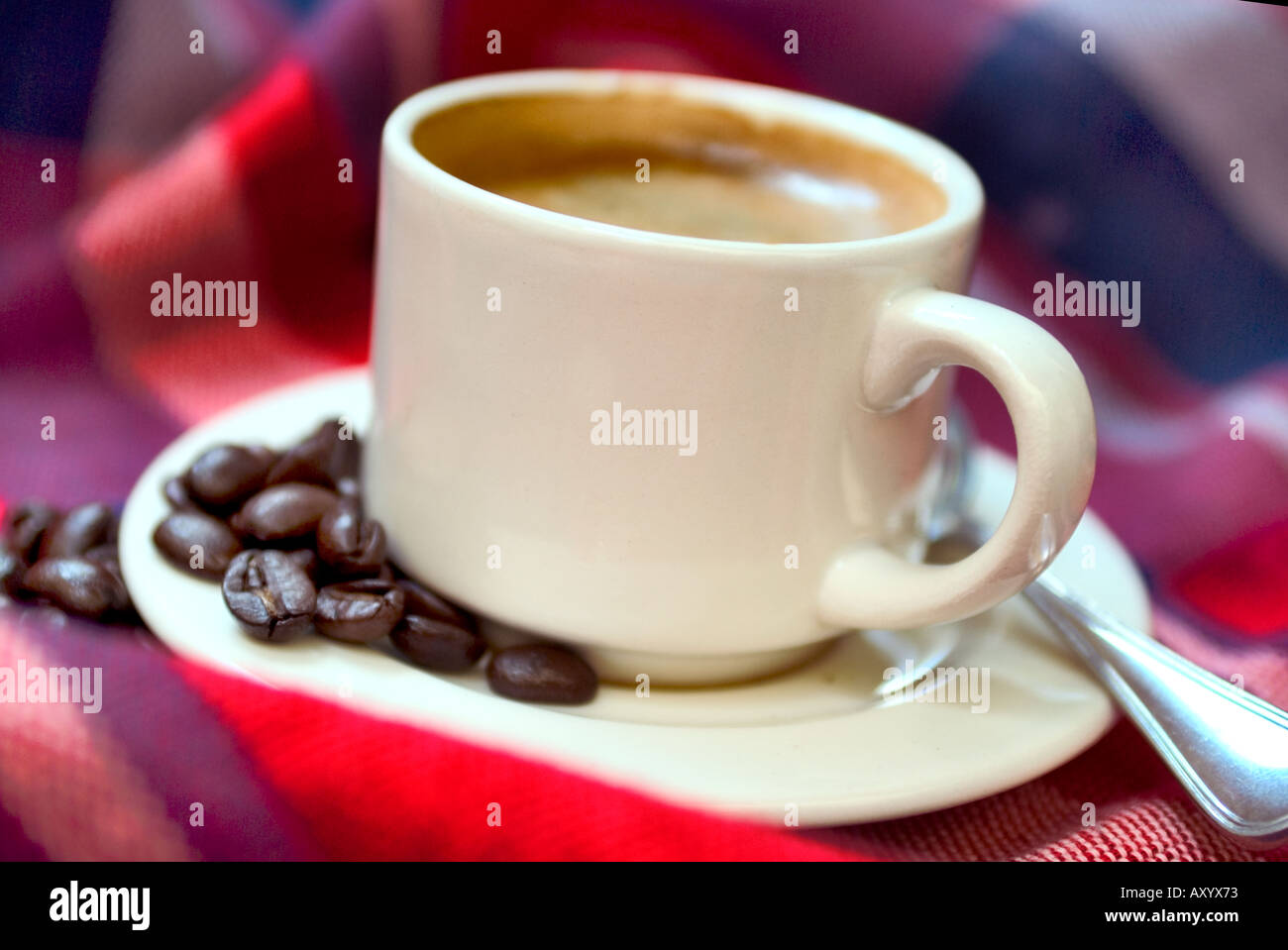 f75ad184676 White cup filled with hot espresso on colorful red background with pile of  coffee beans