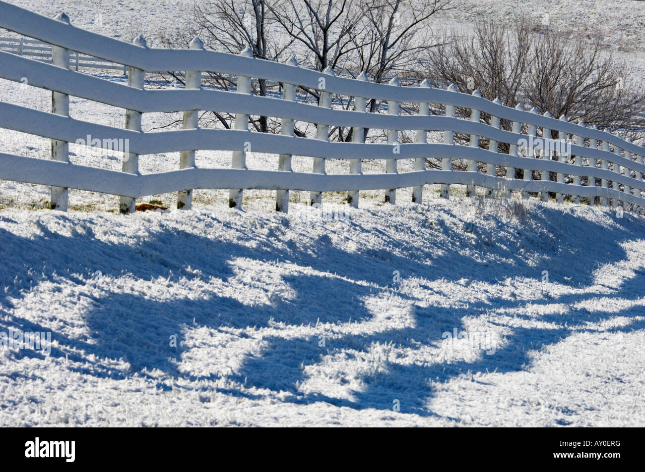 White Wooden Fence and Shadow on Snowy Winter Day Starlight Indiana - Stock Image