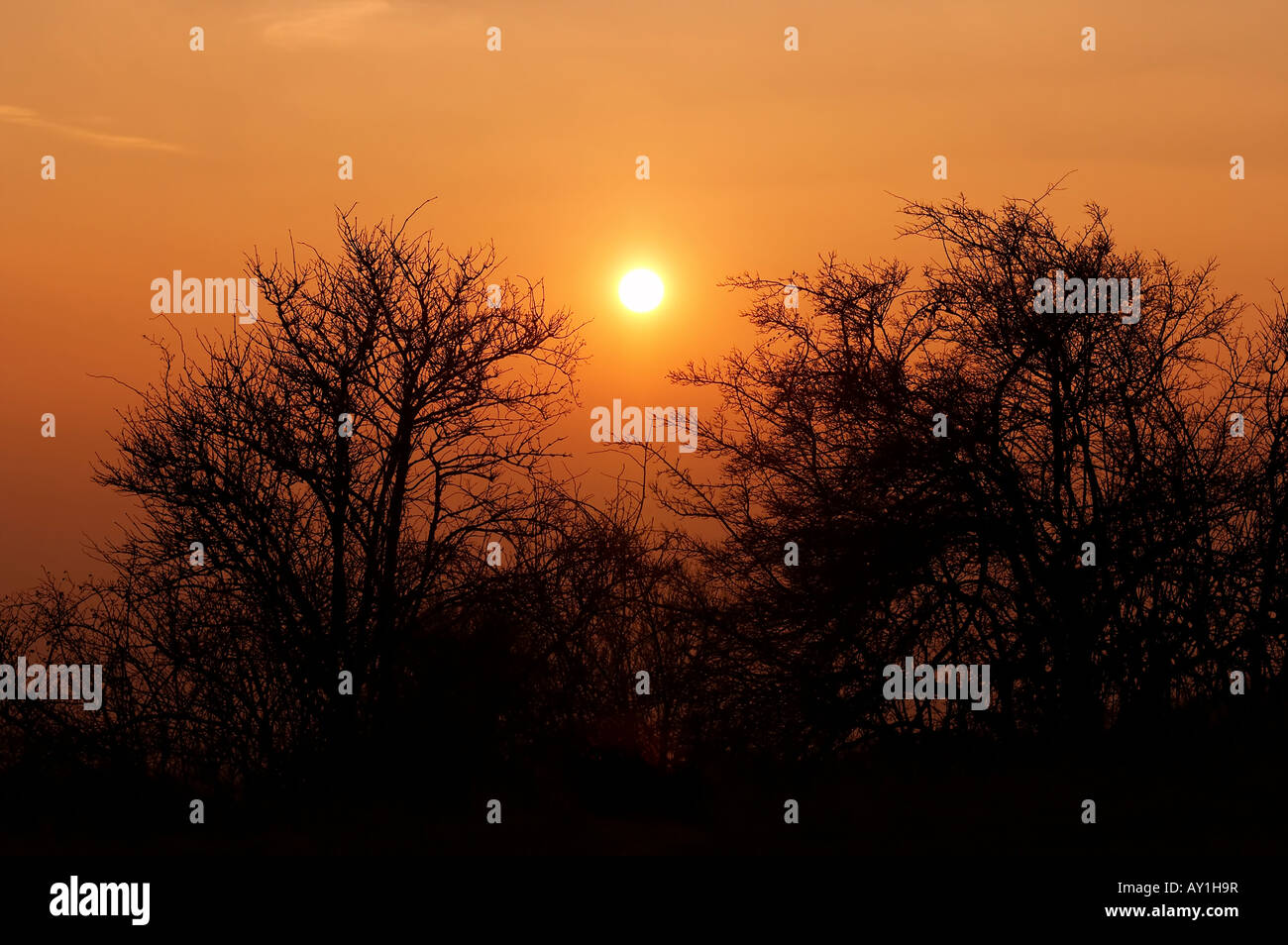 Shot of a sky and sunset - Stock Image