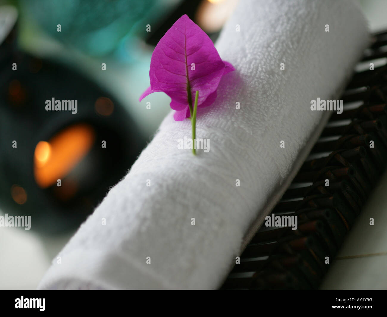 Close-up of a flower (Bougainvillea) on a rolled up towel - Stock Image