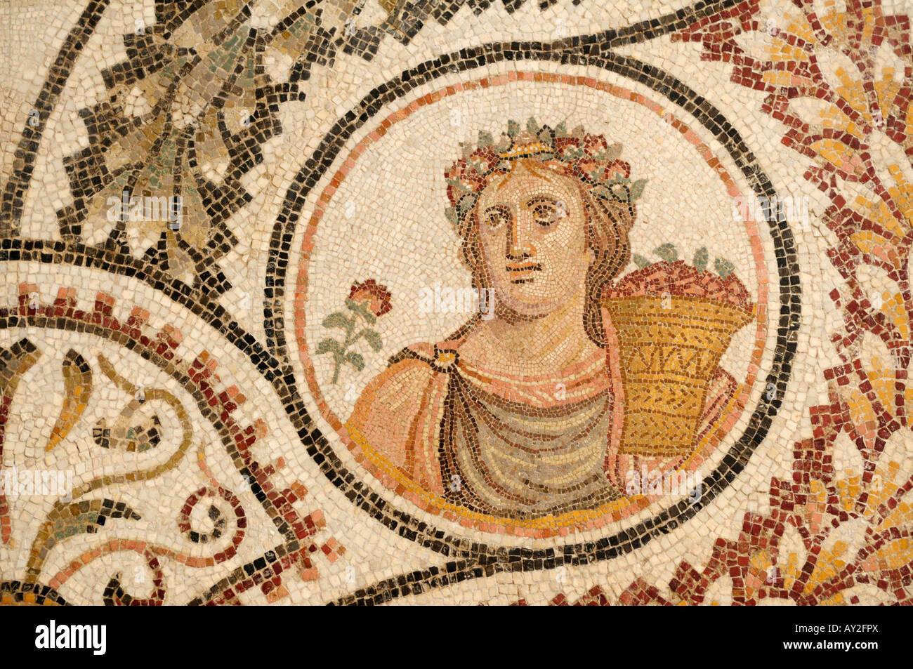 Mosaic, Bardo Museum Tunis Tunisia Stock Photo