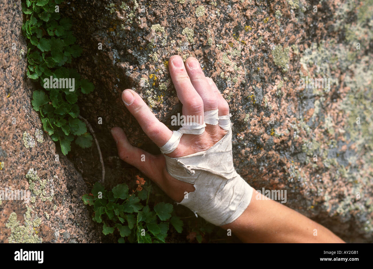 Detail of rock climbers hand - Stock Image