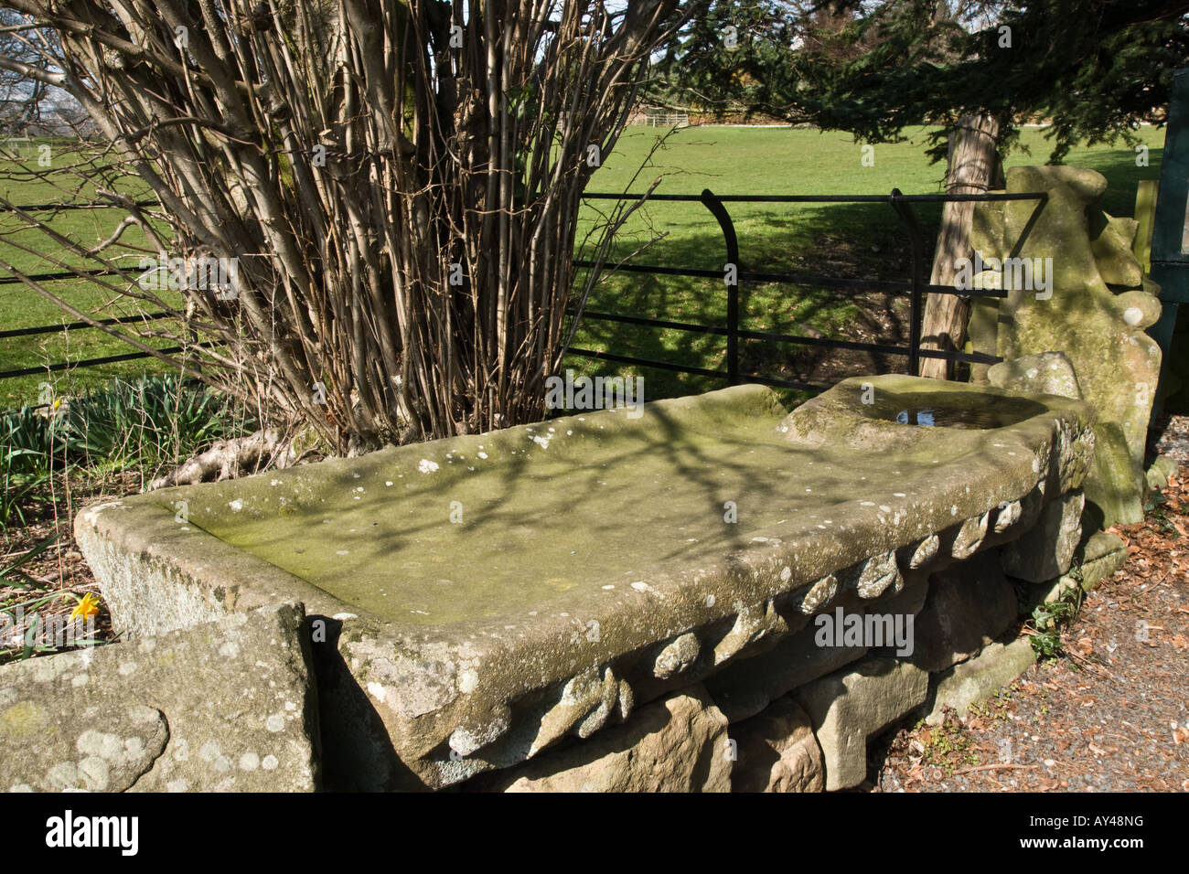 Stone embalming trough at Jervaulx Abbey - Stock Image