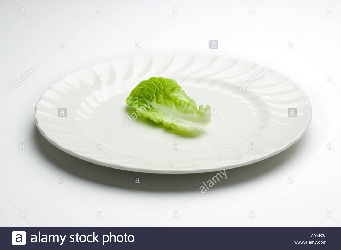 One lettuce leaf on a plate for someone on a diet - Stock Image