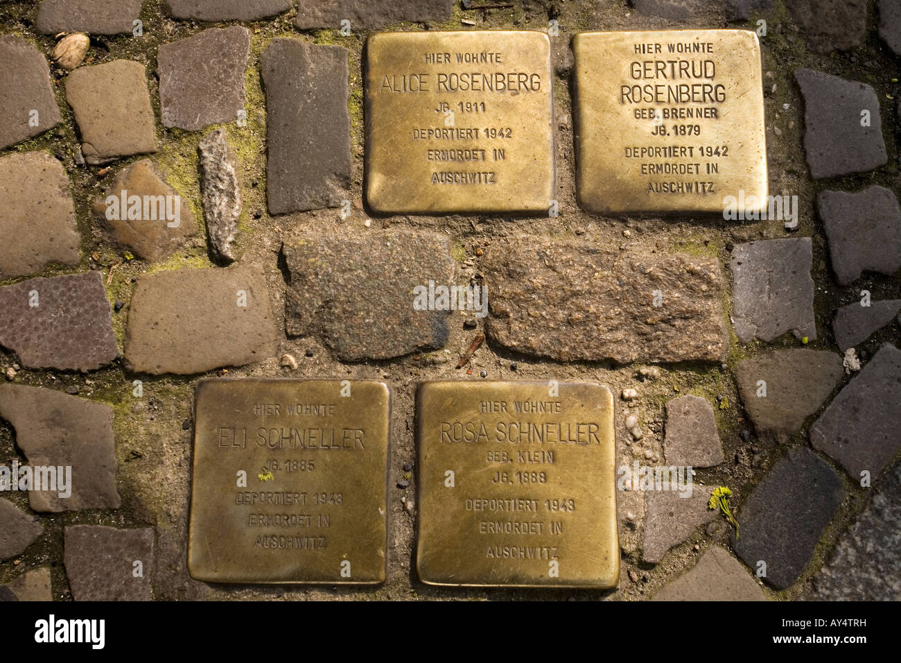 Stolpersteine on Grosse Hamburger Strasse, Berlin, Germany - Stock Image