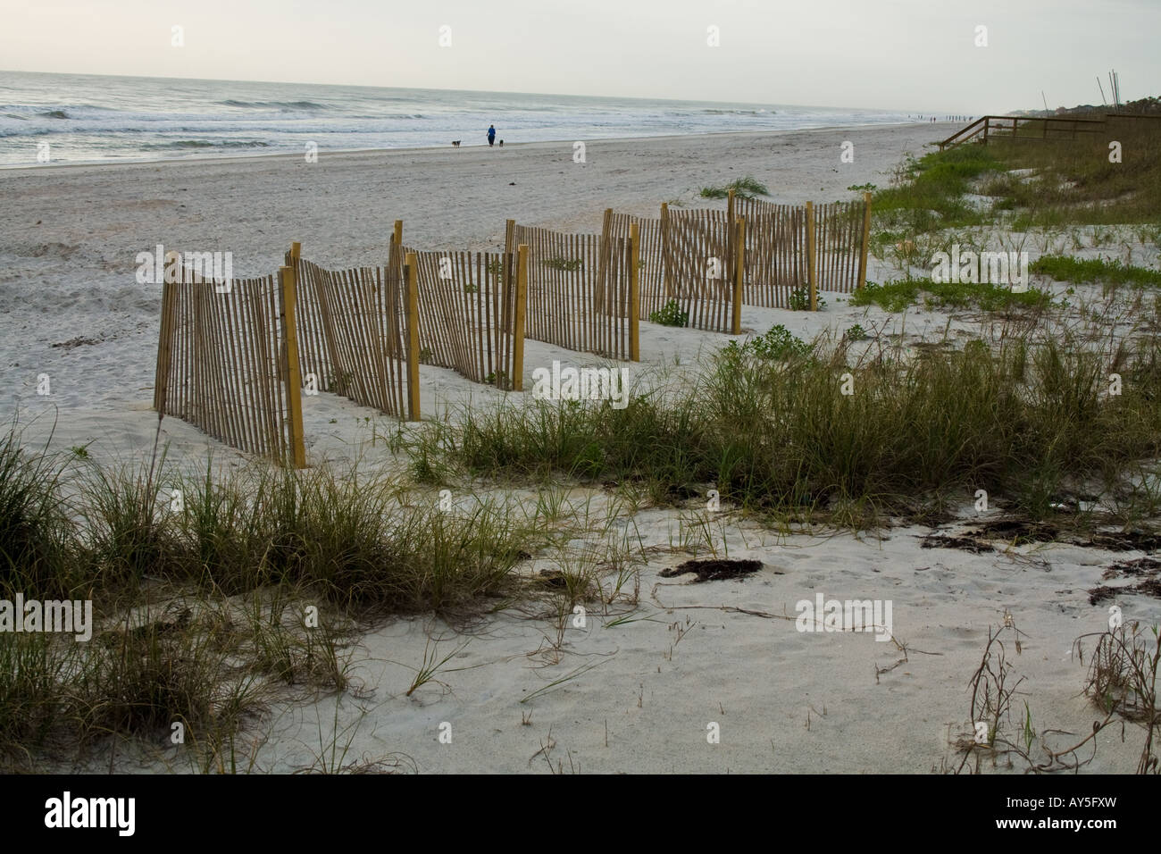 Wooden fence on the beach near Sea Oats by the ocean in Jacksonville Beach, Florida, USA Stock Photo