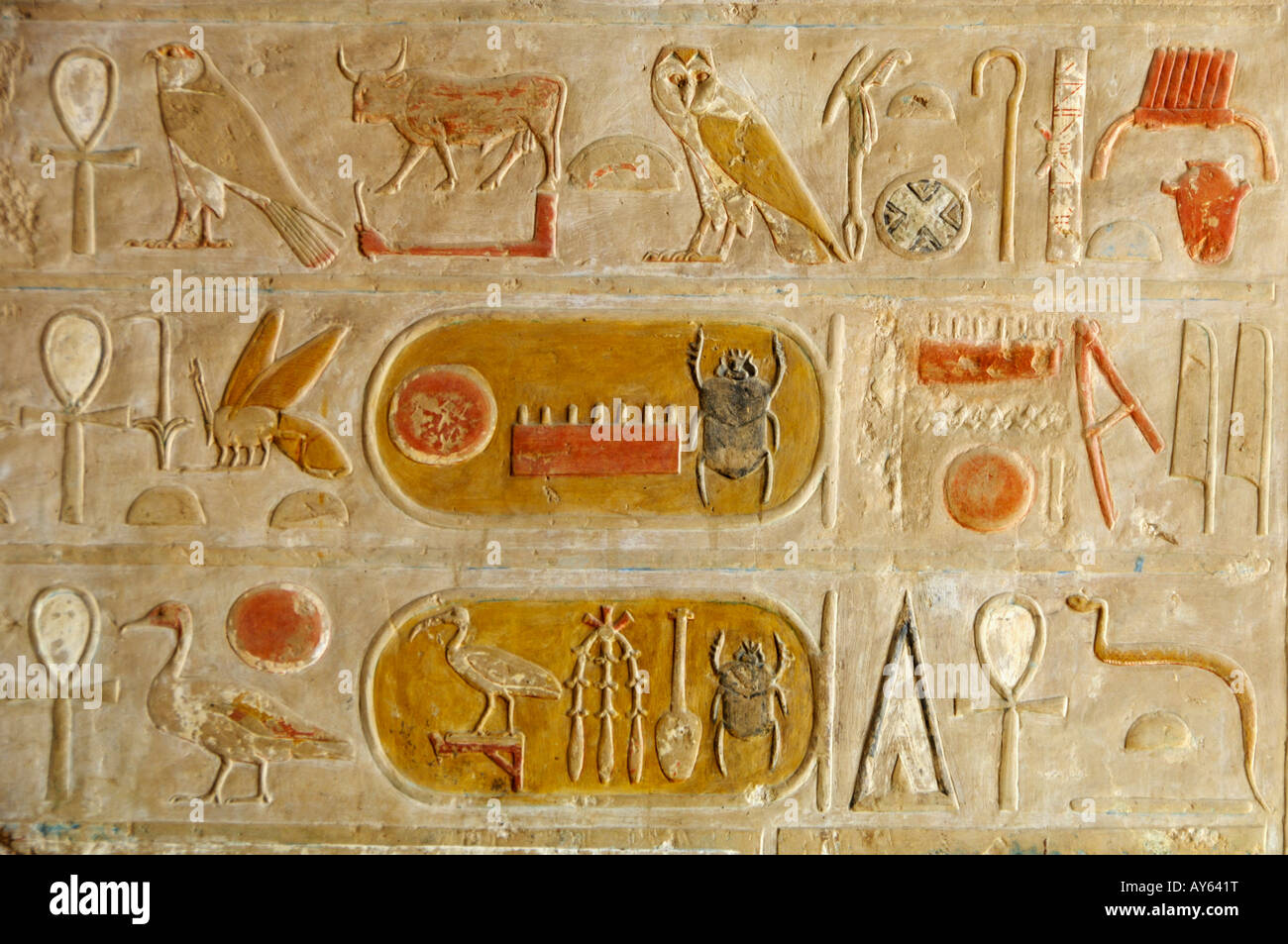 Hieroglyph detail Hatshepsut temple Egypt North Africa - Stock Image