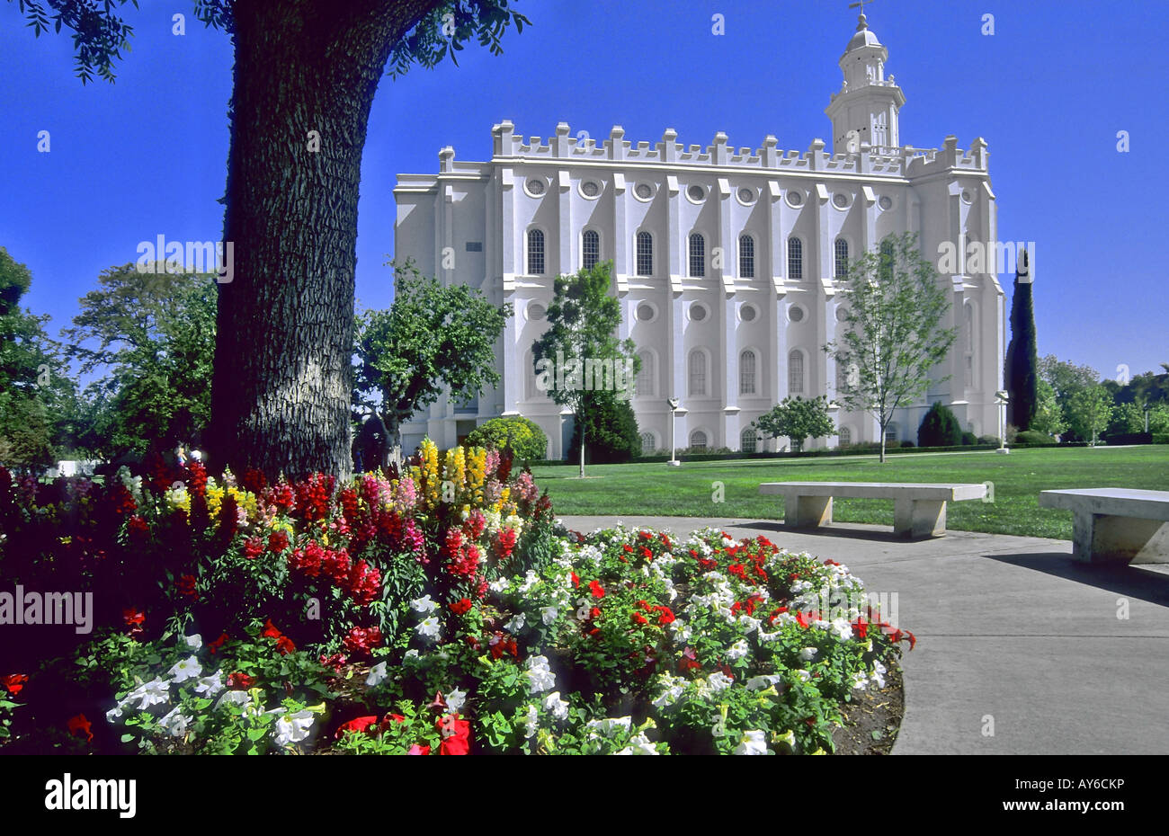 The Mormon Temple at St. George, Utah State, USA - Stock Image