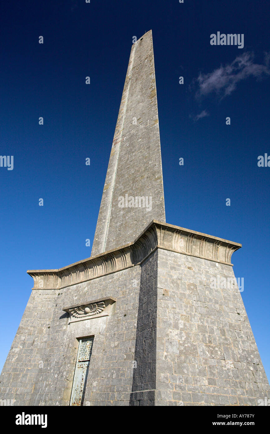 Wellington Monument, Somerset, England, UK - Stock Image