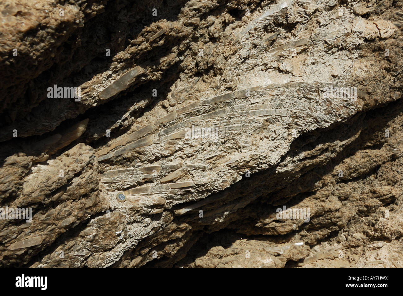 Large crystals of gypsum (anhydrite) deposited during the dry out of Mediterranean sea 5 million years ago. Almeria, - Stock Image