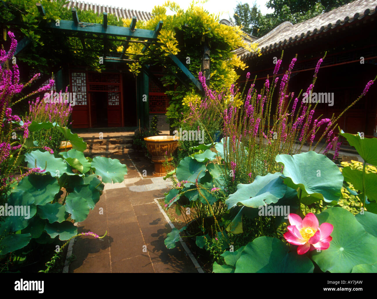 Garden of Prince Gong's Mansion in Beijing hutong, inspired Dream of Red Mansions novel - Stock Image