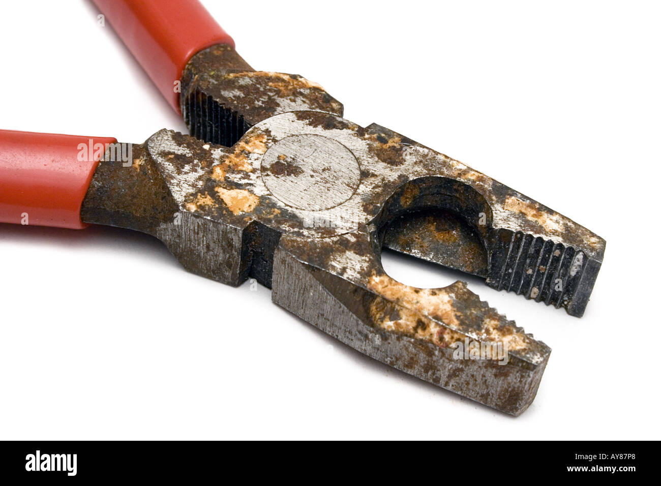 Rusty Pliers - Stock Image