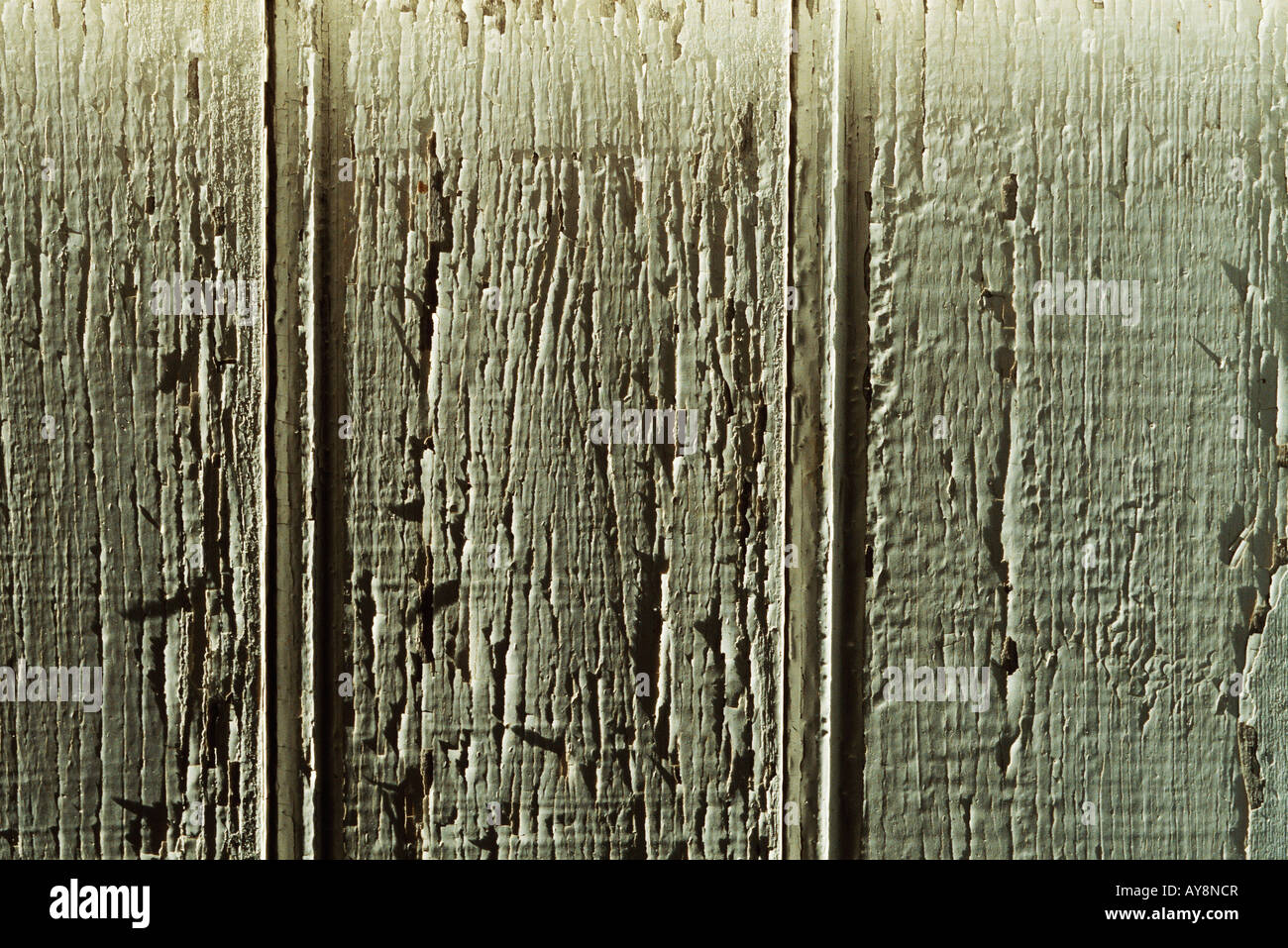 Painted wood, close-up, full frame - Stock Image