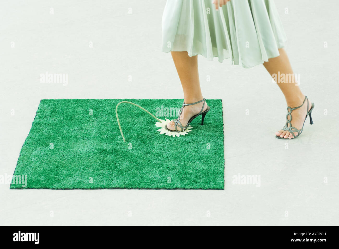 Woman stepping on artificial turf, crushing gerbera daisy with foot, cropped view - Stock Image