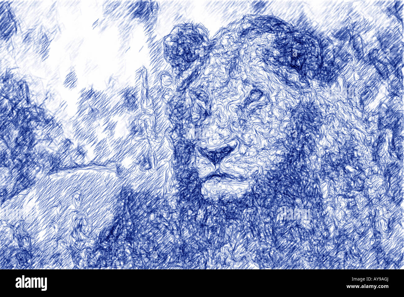 Male lion abstracted - Stock Image