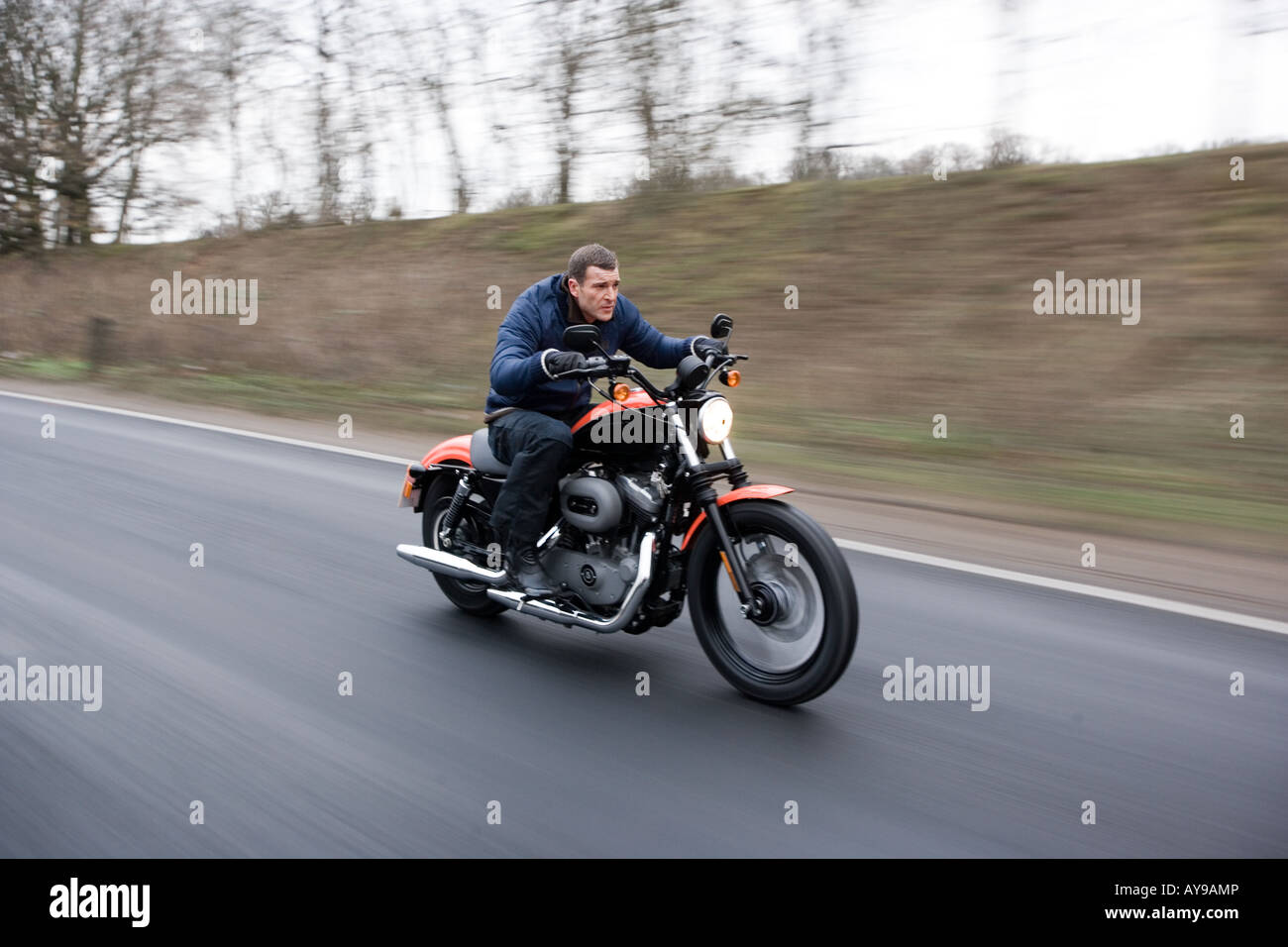 MAN ON HARLEY DAVIDSON Stock Photo: 17035221 - Alamy