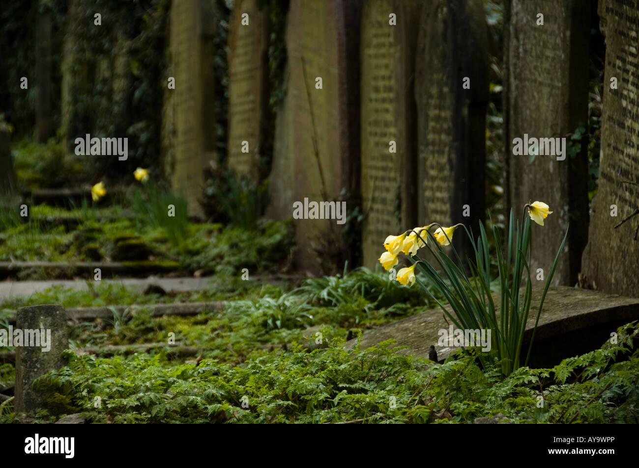 Highgate Cemetery in London, UK - Stock Image