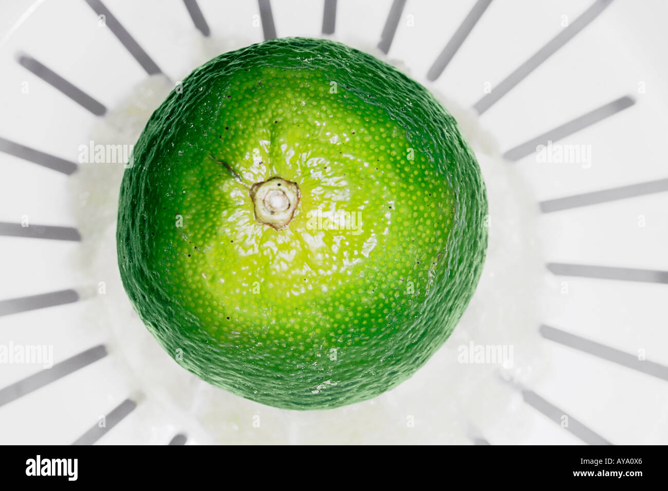 Lime Pressed On Juicer - Stock Image