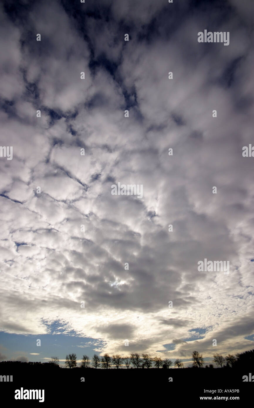 Lower clouds Stratocumulus stratiformis translucidus of an upcoming area of low pressure - Stock Image