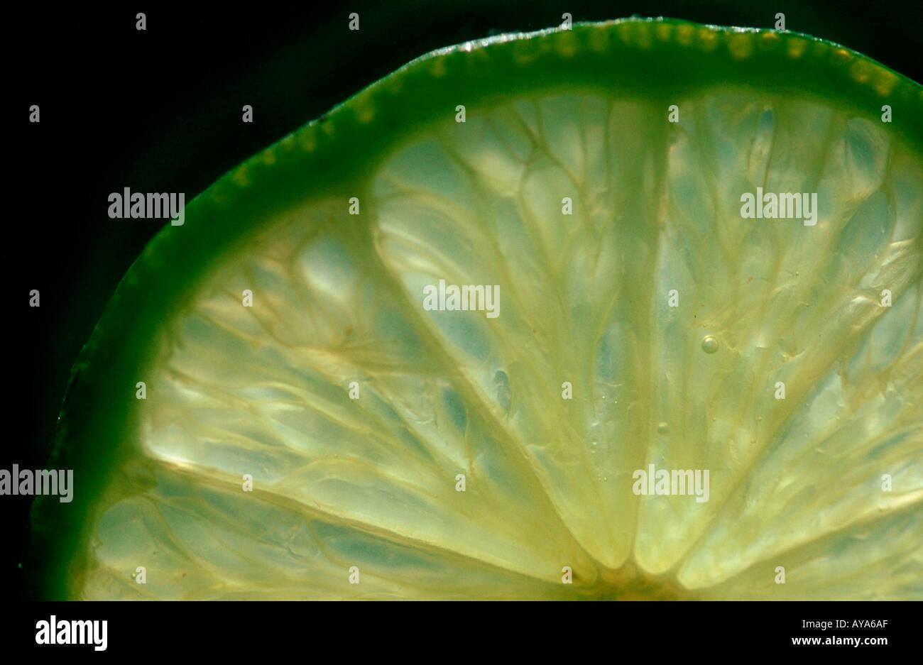 Lime fruits Citrus aurantiifolia Limettenscheibe Rautengewaechse Rutaceae Zitrusfruechte citrus fruits Frucht Nahrungsmittel Stock Photo