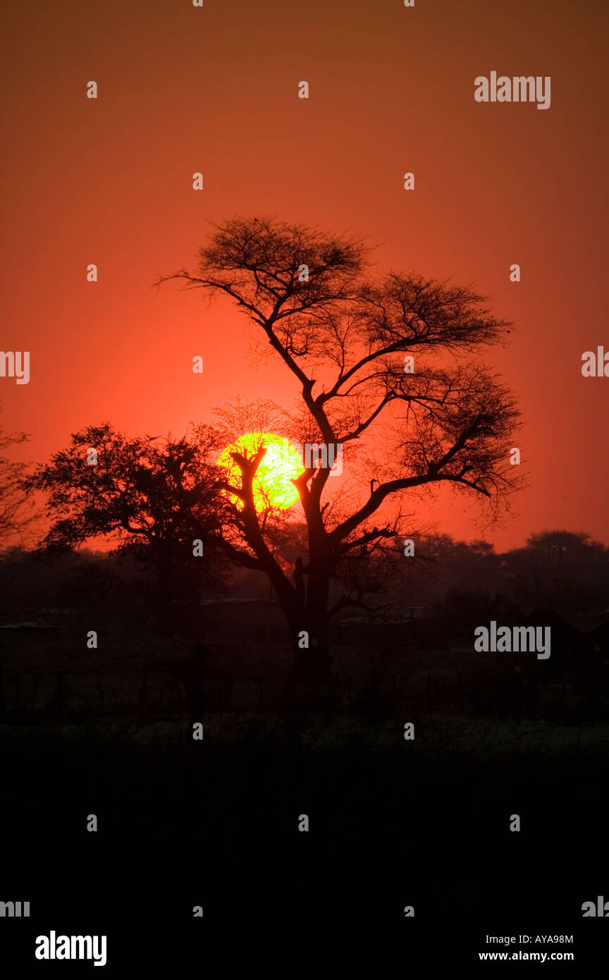 Afrique, Africa, nature, jungle, travel, tourism,sunset, colors - Stock Image