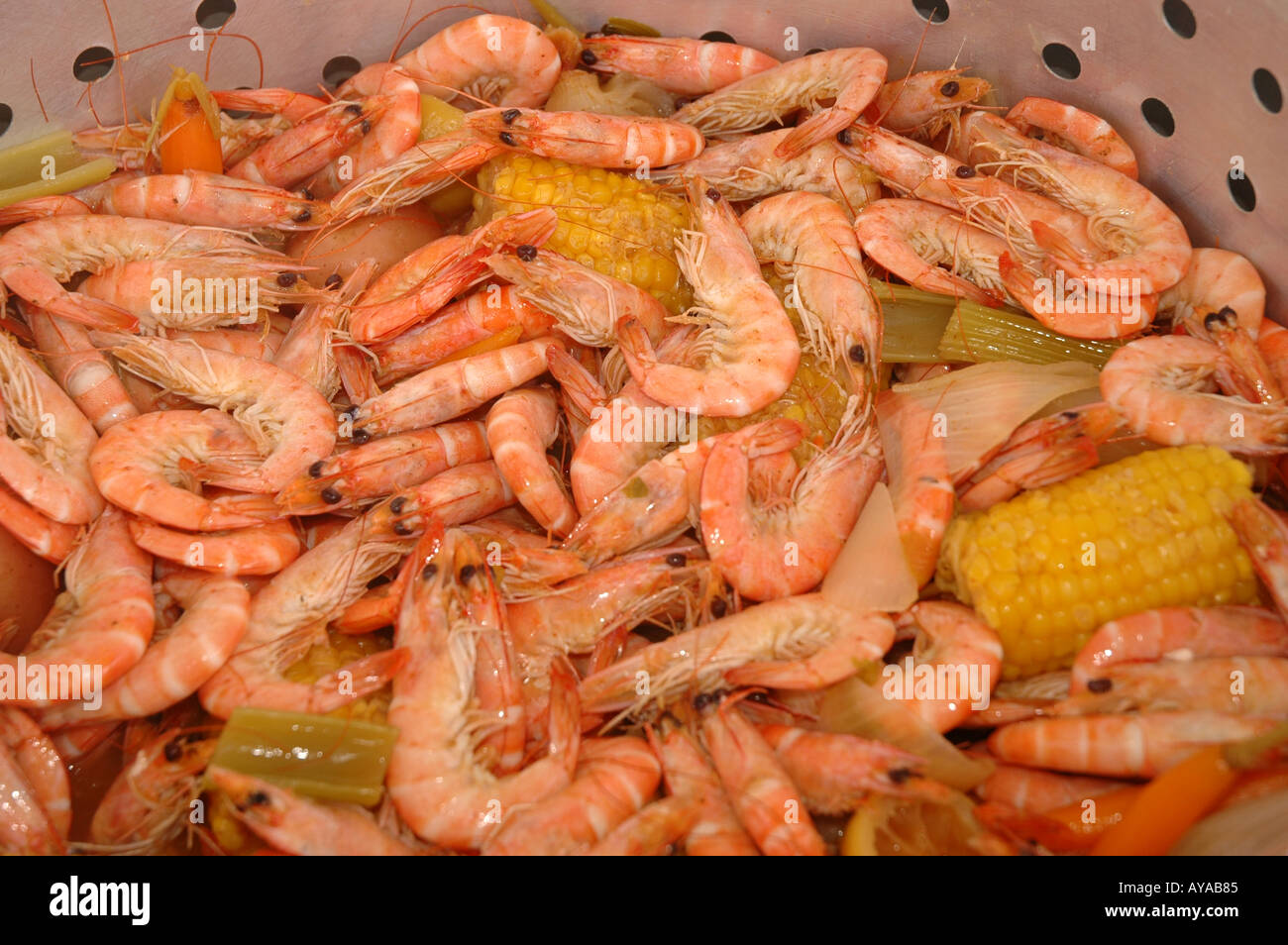 Louisiana shrimp boil Cajun cooking local foods cuisine - Stock Image